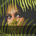 Neas And Divi Media profile image.