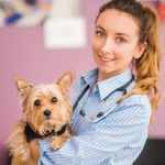 Parkvets Ltd.  profile image.