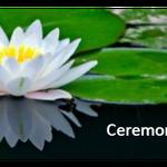 Ceremonies.Scot profile image.