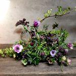 Botaniste Florals profile image.