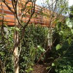 Gannon & Associates Landscape Architecture profile image.