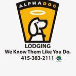 AlphaDog Lodging profile image.