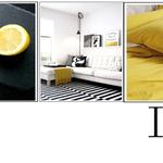 IVR Interiors & Decor profile image.