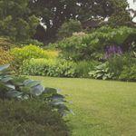 Isabella Gardens profile image.