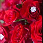 Twiggs Florist profile image.