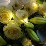 Auckland Park Florist profile image.