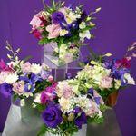 Pattingtons flowers & gifts profile image.