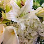CC Fine Florals profile image.