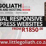 Little Goliath profile image.