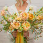 Whiskey Jack Flowers profile image.
