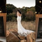 Little White Ribbon  Photography profile image.