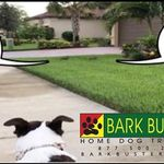 Bark Busters Fox River Valley WI profile image.
