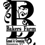 Bakers Farm Kennel & Grooming profile image.