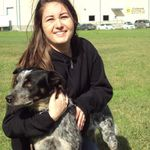 Cheyenne's Pet Care profile image.