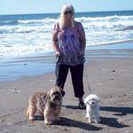 Coco & Boo Pet Concierge Plus profile image.