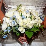 Milestone Occasions by Sandra Lynn Wedding and Event Planning profile image.