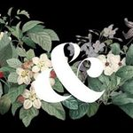 Ampersand Events profile image.