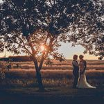 Nancy Critchley Photography profile image.