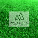Purple Rain Landscaping profile image.