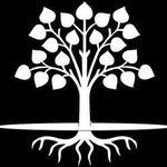 Sibanda Landscaping profile image.