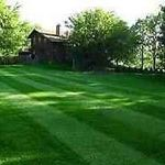 Instant Lawns & Landscaping profile image.