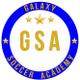 Galaxy Soccer Academy logo