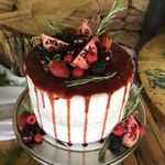 Schuster Cakes profile image.