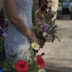 Seed Of Light Wedding Films profile image.
