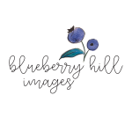 Blueberry Hill Images profile image.