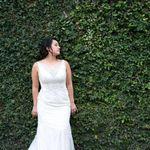 Springette Events LLC profile image.