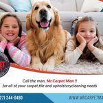 Mr. Carpet Man profile image.