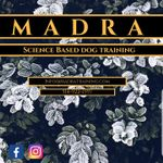 MADRA profile image.