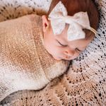Shannon Charnes Photography profile image.