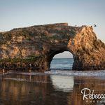 Rebecca Stark Photography profile image.
