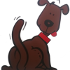 Happy Tails dog walking and pet services  profile image