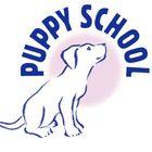 Puppy School - Sussex