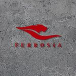 ara@ferrosia.com profile image.