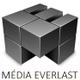 MediaEverlast logo
