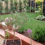 Godberry landscapes profile image.