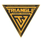 Triangle Theory Training profile image.