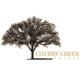 Cherry Creek Estate logo