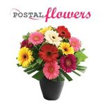Postal Flowers Ireland profile image.