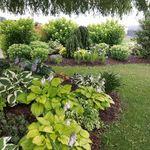 ISR Gardening profile image.