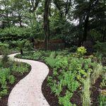 Gaia landscapes Ltd profile image.
