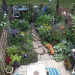 GreenHavens Landscaping and Design profile image.