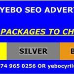 YEBO SEO profile image.