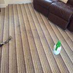 info@northstarcleaning.co.uk profile image.