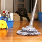 Master Clean Services