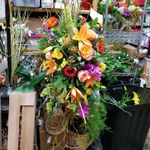 Cityview Florist and Gifts profile image.