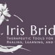 Iris Bridge logo